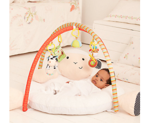 Luxury Playmat and Arch