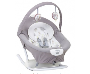 Graco Duet Sway Swing With Portable Rocker Reviews